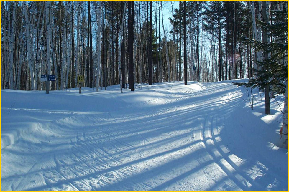 Temiskaming Nordic - Ski Northern Ontario - Blue Moose Trail